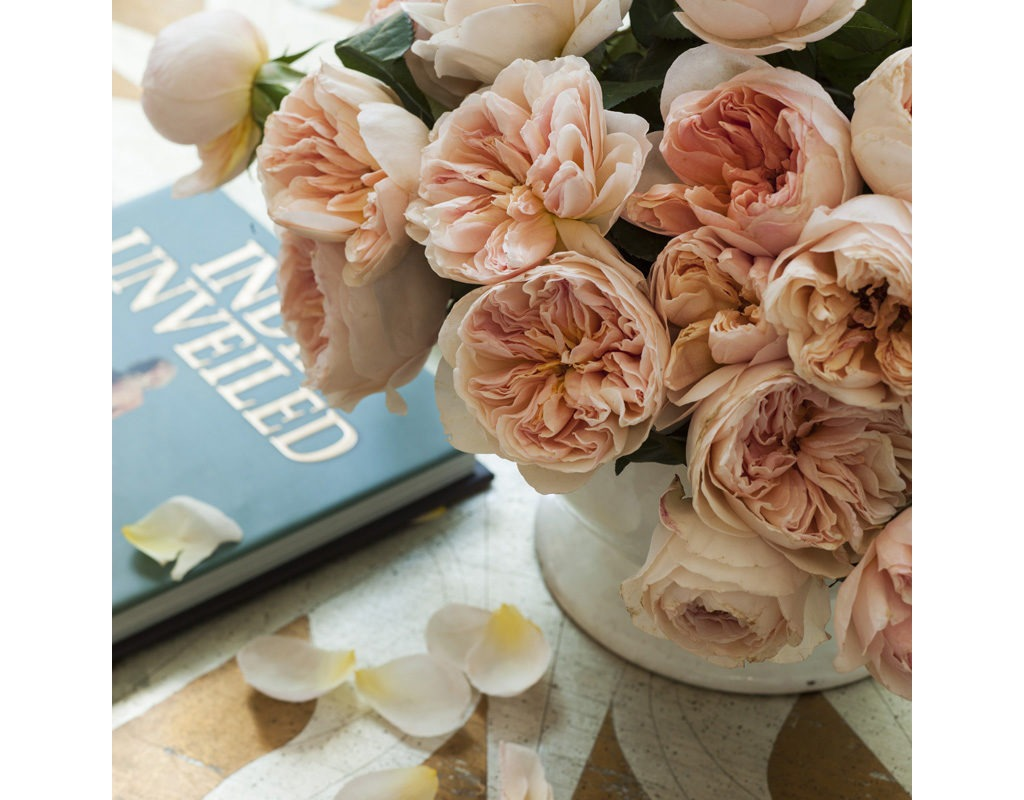 Happily Ever After…Designer Lauren Liess Creates a Beautiful Interior Story in Oakton, Virginia