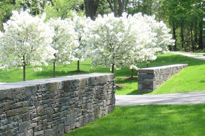 Landscape Design SiteCreative