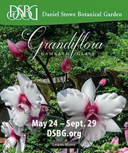 Daniel Stowe Botanical Garden Ad
