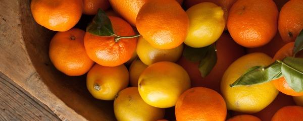 citrus basics