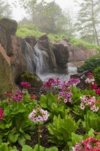 treasures_botanical