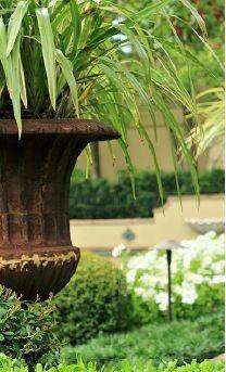 A Graceful Garden 07