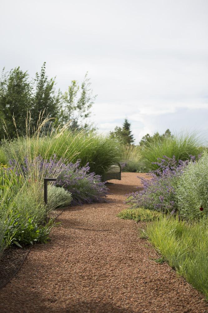 Santa Fe Landscape Design