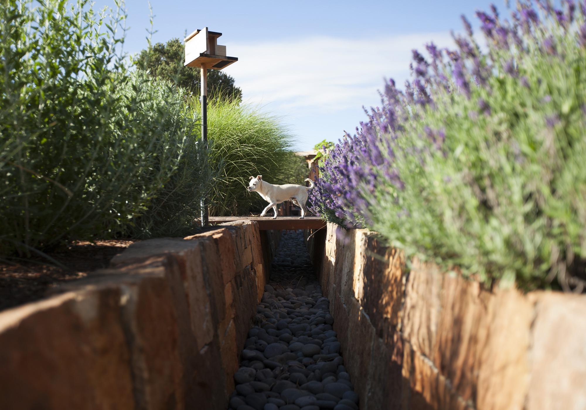 Santa Fe Garden Design
